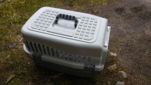 Working With The RSPCA - Cat Transport Box