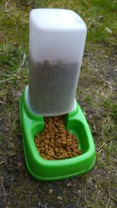 Working With The RSPCA - Cat Food Station