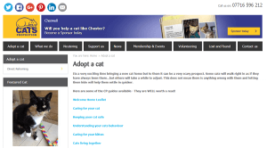 Interview With Cherwell CP