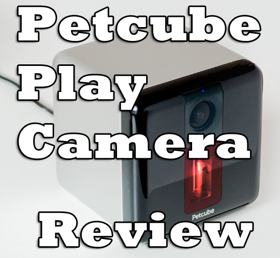 Petcube Play Camera Review