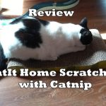 Review: CatIt Home Scratcher With Catnip
