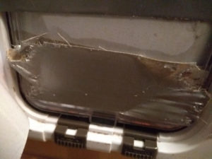 Cats Opened Gaffa Taped Cat Flap
