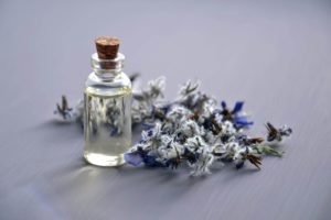 Can Smells That Cats Hate such as Lavender Be Used As Repellent?